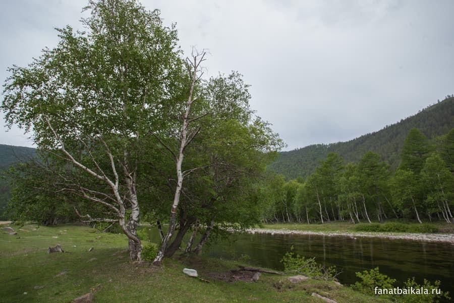 река Бугульдейка