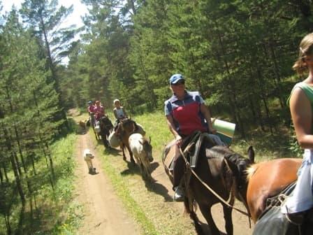конные туры