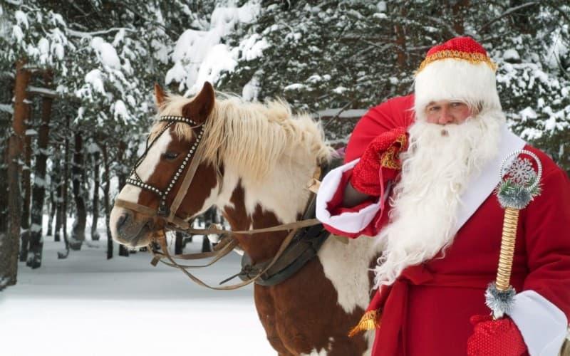 новогодние елки 2016 иркутск