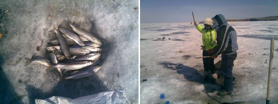 подледная рыбалка на Байкале тур
