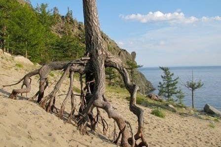 бухта песчаная ольхон